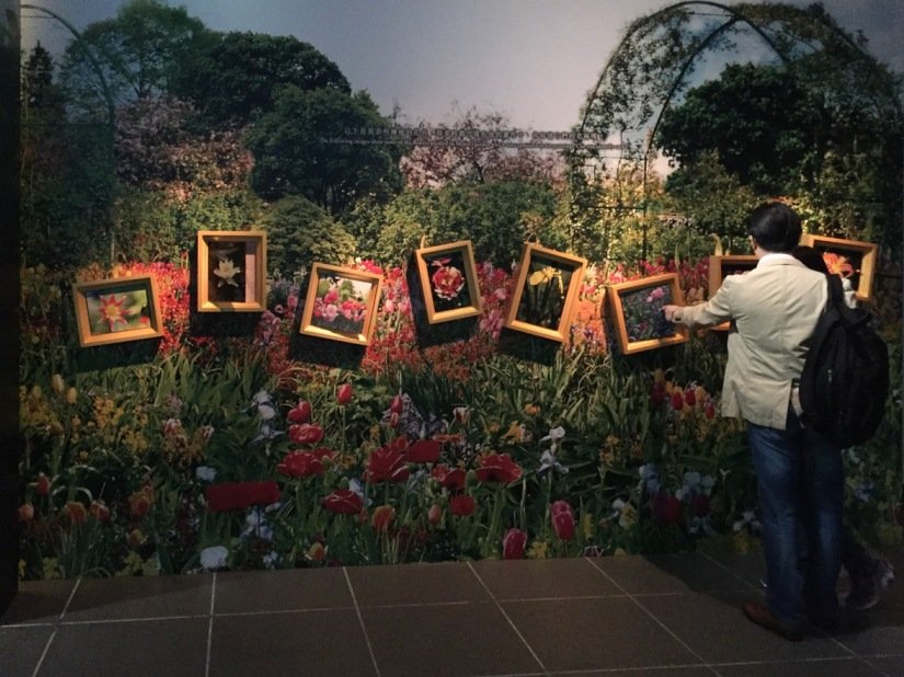 Claude Monet exhibition Hong Kong Heritage Museum Sha Tin May 2016-12