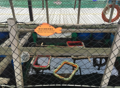 Lamma Fisherfolk's Village Hong Kong May 2016-5