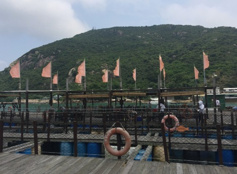 Lamma Fisherfolk's Village Hong Kong May 2016-8