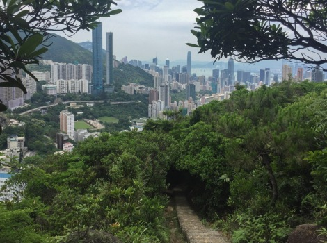 Wong Nai Chung Gap Hike May 2016-1