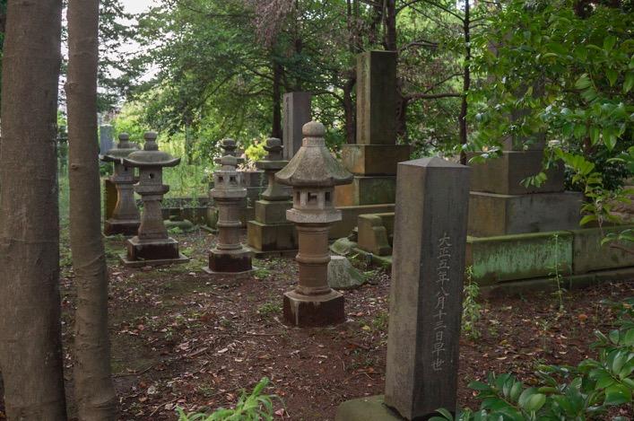 Tokyo Aoyama Cemetery 2015-6
