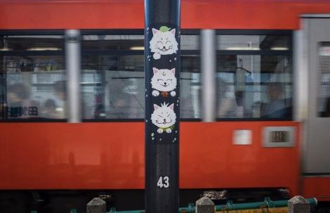 Tokyo Gotokuji 2015-5