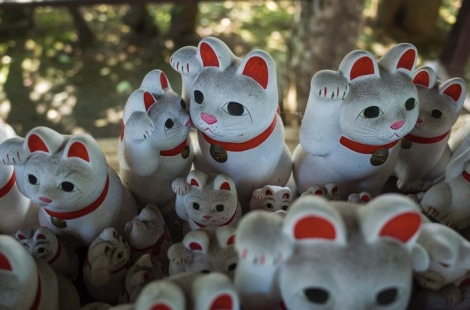 Tokyo Gotokuji Cat Shrine 2015-11