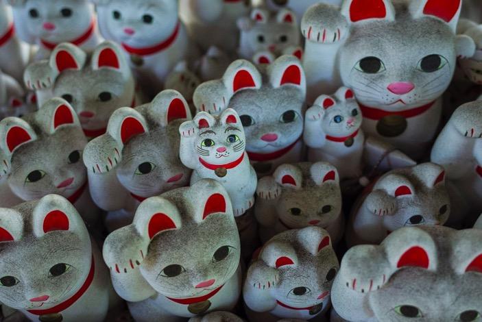 Tokyo Gotokuji Cat Shrine 2015-12