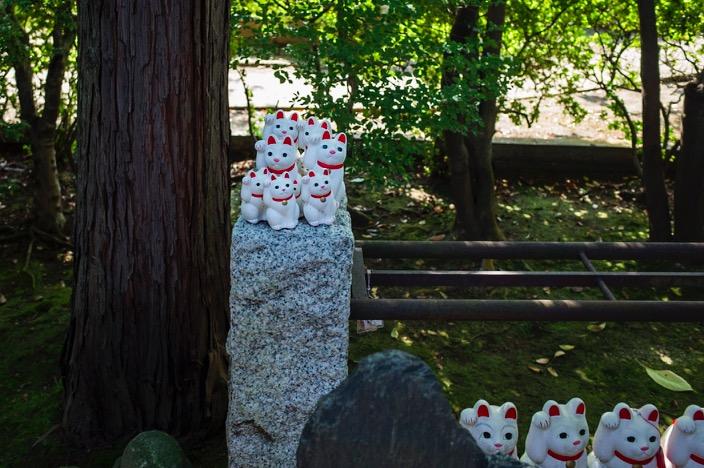 Tokyo Gotokuji Cat Shrine 2015-14