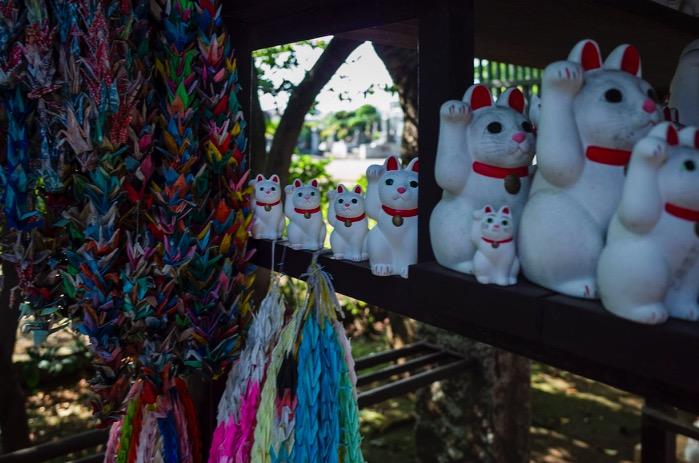 Tokyo Gotokuji Cat Shrine 2015-15