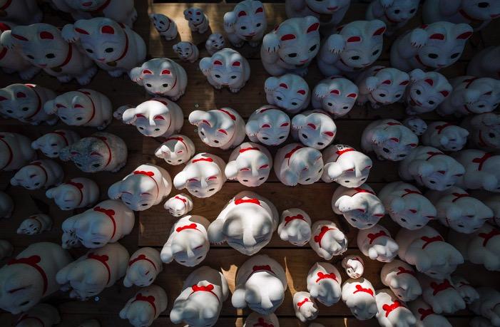 Tokyo Gotokuji Cat Shrine 2015-16
