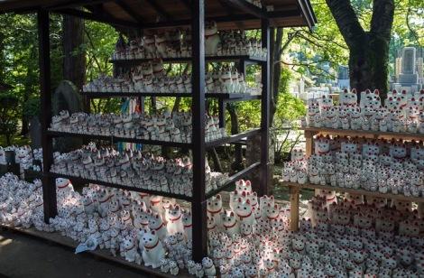 Tokyo Gotokuji Cat Shrine 2015-8