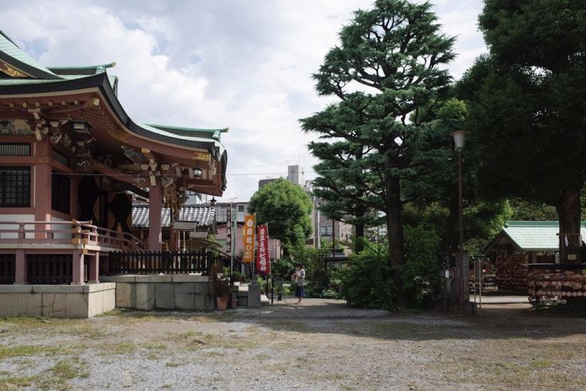 Tokyo Imado Jinja Shrine Oct 2015-4