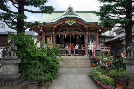 Tokyo Imado Jinja Shrine Oct 2015-5