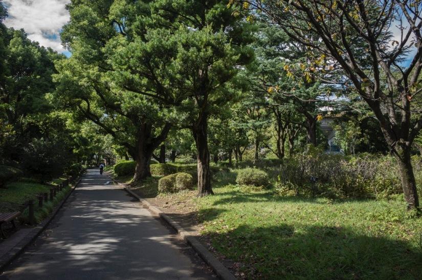 Tokyo Kitanomaru Park Sep 2015-2