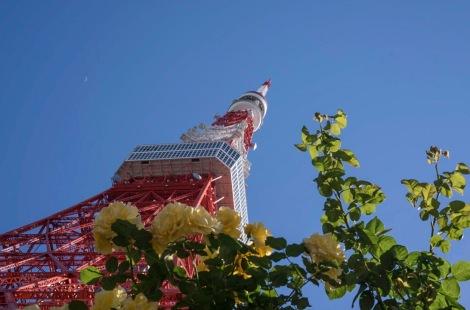 Tokyo Tower May 2016-3