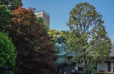 Tokyo Yanaka May 2016-4