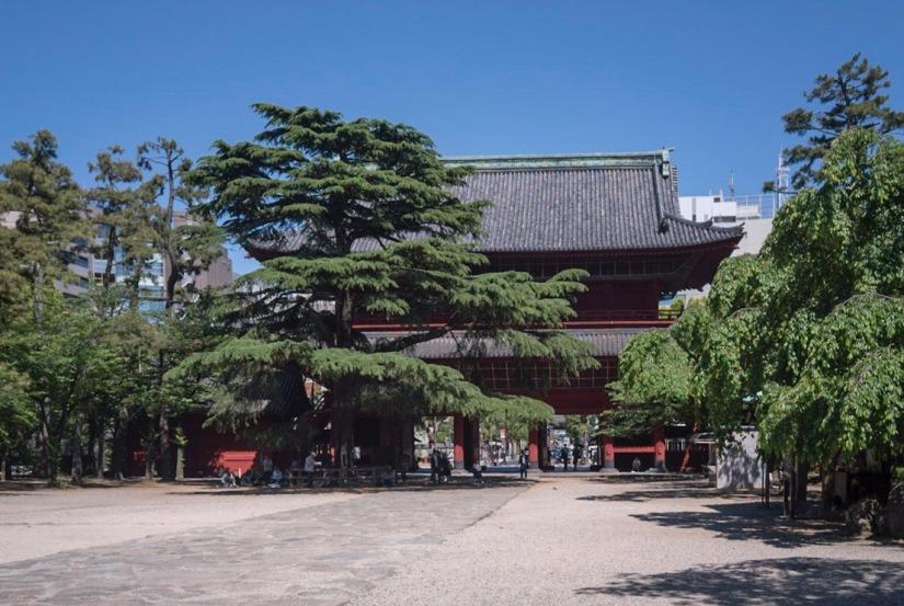 Tokyo Zojoji Temple May 2016-2