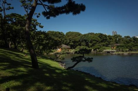Tokyo Hama Rikyu Garden 2015-2