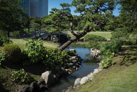 Tokyo Hama Rikyu Garden 2015-4