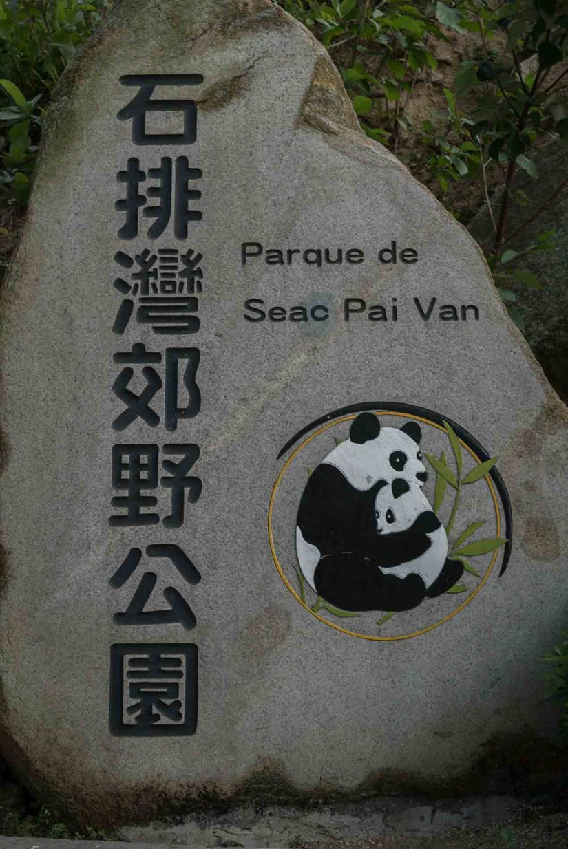 22 - Macau Giant Panda - Jan 2019